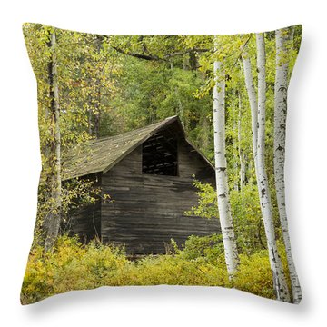 Aspens And Barn Throw Pillow