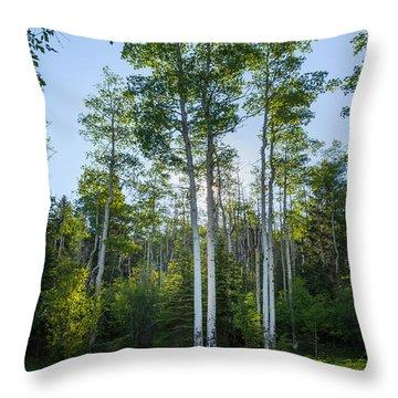 Aspens At Sunrise 1 - Santa Fe New Mexico Throw Pillow