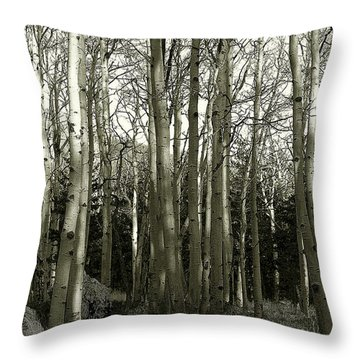 Aspens Black And White Throw Pillow