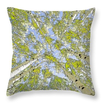 Aspens Looking Up Throw Pillow