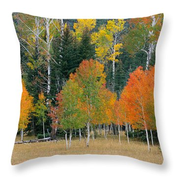 Aspens And Meadow-pan Throw Pillow