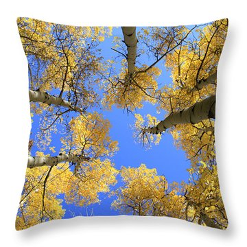 Aspens Skyward Throw Pillow