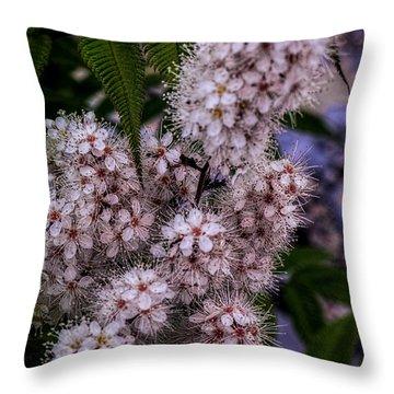 Aspire Throw Pillow by Jo-Anne Gazo-McKim