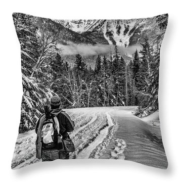 Assessing The Route Throw Pillow