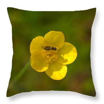 Throw Pillow featuring the photograph Association by Rima Biswas
