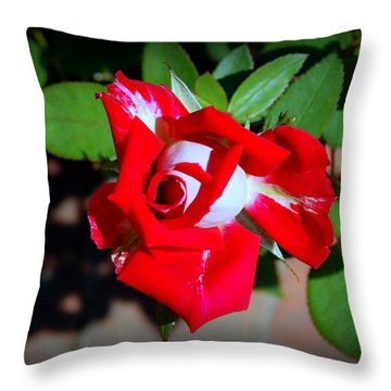 Assorted Flower 003 Throw Pillow