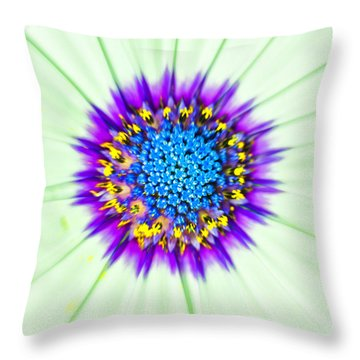 Aster Number Two Throw Pillow
