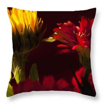 Asters In The Light Throw Pillow