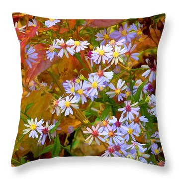 Asters Throw Pillow by Ron Jones
