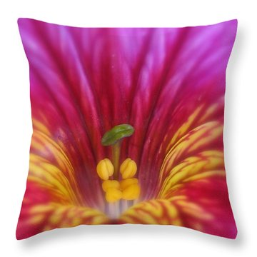 Astounded Photography Throw Pillow