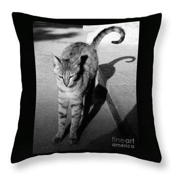Aswan Cat Throw Pillow