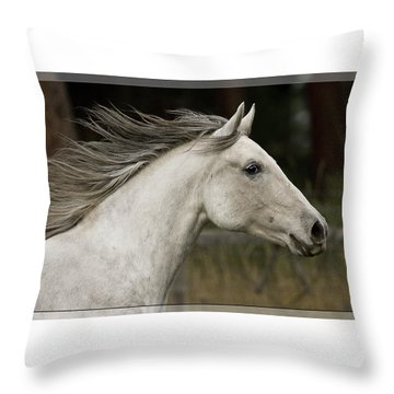 Throw Pillow featuring the photograph At A Full Gallop D7796 by Wes and Dotty Weber