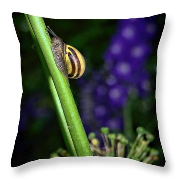 At A Snail's Pace Throw Pillow