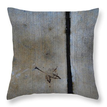 Throw Pillow featuring the photograph At An Impass by Jani Freimann