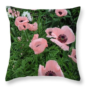 At Bridge Of Flowers  --  Massachusetts  Throw Pillow