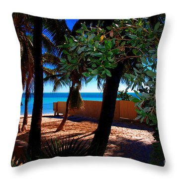 At Dog's Beach In Key West Throw Pillow by Susanne Van Hulst
