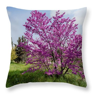 At Full Blossom Throw Pillow