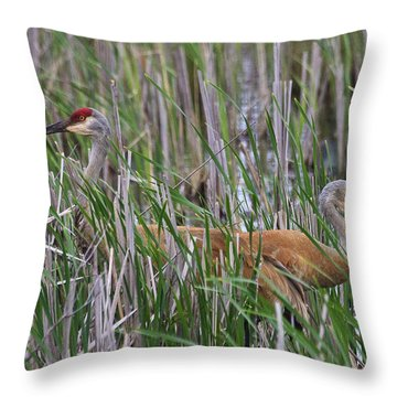 At Home In The Marsh Throw Pillow