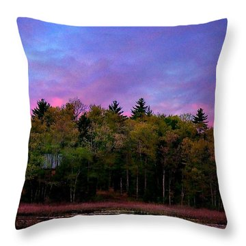 At Sunset Throw Pillow by Barbara S Nickerson