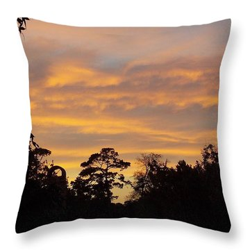 Throw Pillow featuring the photograph At The End Of The Day by John Glass