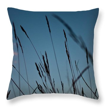 At The Fall Of Night Throw Pillow by K Hines