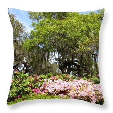 Throw Pillow featuring the photograph At The Park by Beth Vincent