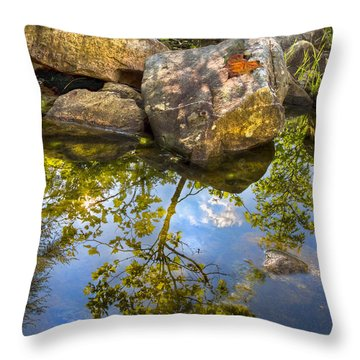 Throw Pillow featuring the photograph At The River by Debra and Dave Vanderlaan