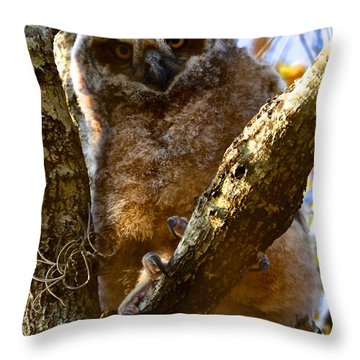 Throw Pillow featuring the painting At The Top by AnnaJo Vahle