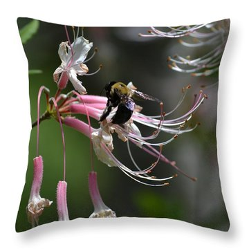 Throw Pillow featuring the photograph At Work by Tara Potts