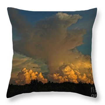 Athena Throw Pillow by Shari Nees