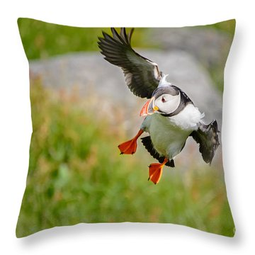 Atlantic Puffin, Incoming.... Throw Pillow