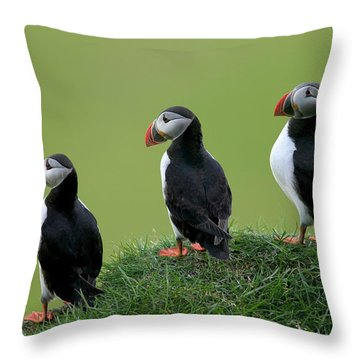 Atlantic Puffin Trio On Cliff Throw Pillow by Cyril Ruoso