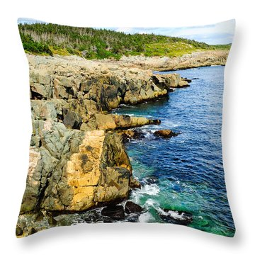 Atlantic Shoreline Throw Pillow by Donald Fink