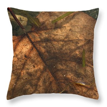Atres 11 Throw Pillow by Karol Livote