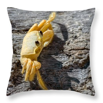 Attitude Throw Pillow