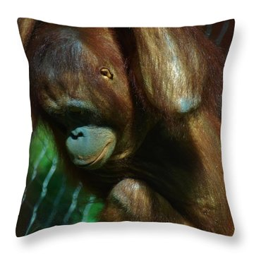Throw Pillow featuring the photograph Attitude Problem by Ramona Whiteaker
