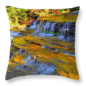 Au Train Falls Throw Pillow by Terri Gostola
