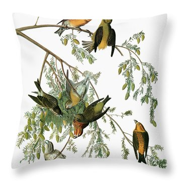 Audubon Crossbill Throw Pillow