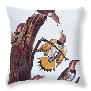 Audubon Golden-winged Woodpeckers Throw Pillow