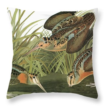 Audubon Woodcock Throw Pillow
