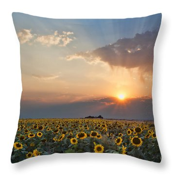 August Dreams Throw Pillow