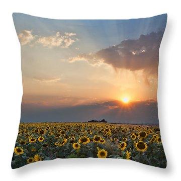 August Dreams Throw Pillow by Jim Garrison