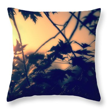 August Memories Throw Pillow