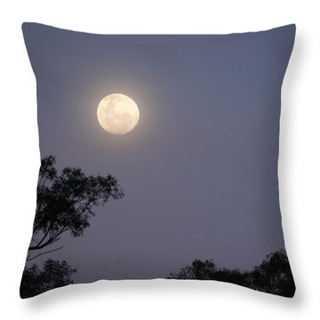 Throw Pillow featuring the photograph August Moon by Evelyn Tambour