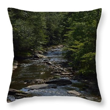 August On Gandy Throw Pillow by Randy Bodkins