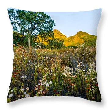 August Sunrise In Malibu Creek State Park Throw Pillow