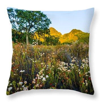 August Sunrise In Malibu Creek State Park Throw Pillow by Joe Doherty