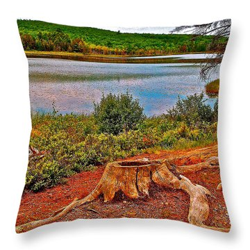 Aunt Betty Pond In Acadia National Park-maine  Throw Pillow