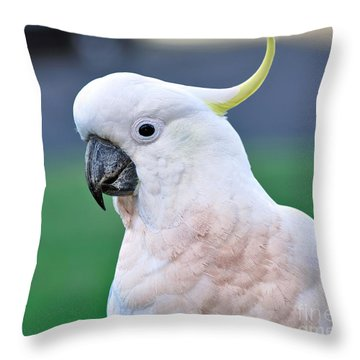 Australian Birds - Cockatoo Throw Pillow by Kaye Menner