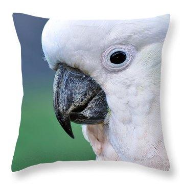 Australian Birds - Cockatoo Up Close Throw Pillow by Kaye Menner